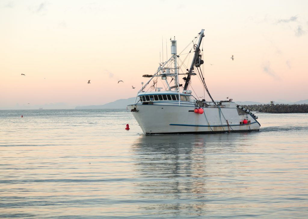 Regulating fishing boats like these is important