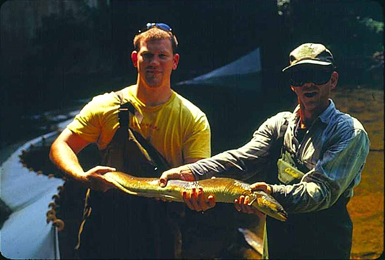 Photo of a large American Eel collected from Manatawny Creek, Pennsylvania held by Kevin O'Donnell, left, and Paul Overbeck, right during a survey of eel populations in streams of the Delaware River watershed, July 2001. Photo courtesy of Rich Horwitz, Academy of Natural Sciences of Philadelphia.