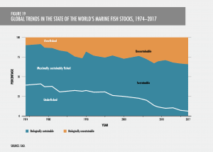 global trends in fisheries over time