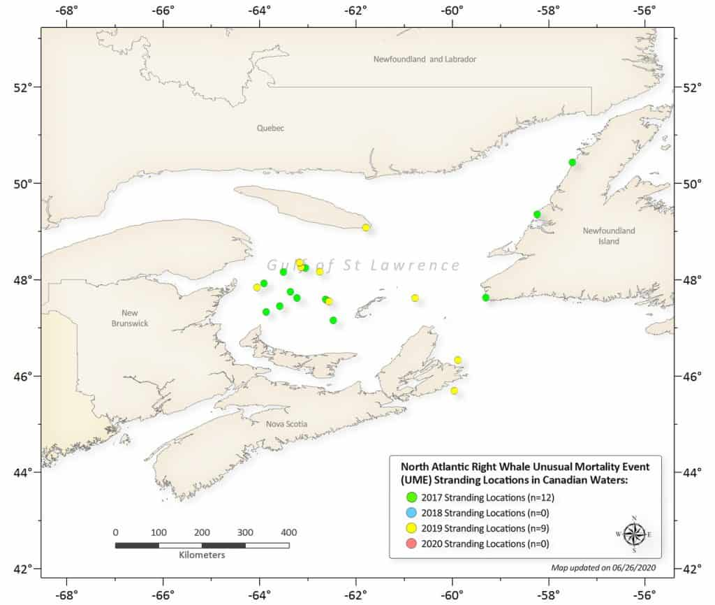 Map of unusual mortality events for right whales in Canadian waters, specifically the Gulf of St. Lawrence
