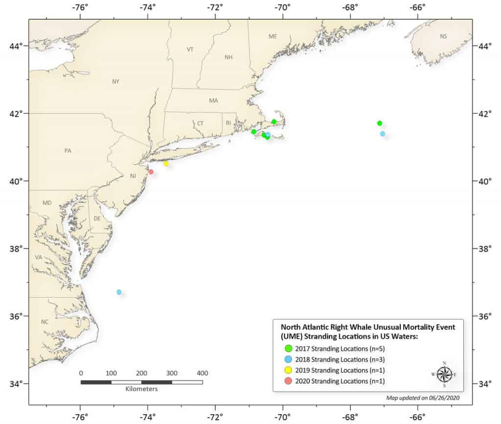 Map of new england showing unusual mortality events of right whales