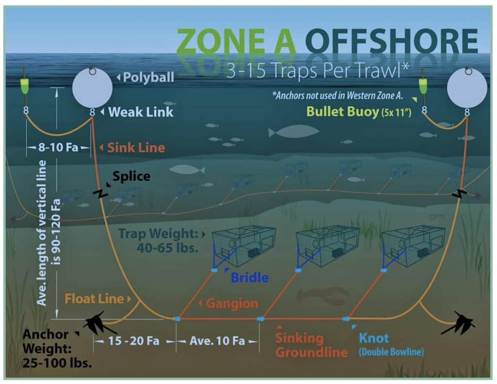 A graphic example of an offshore lobster fishing gear configuration to minimize entanglement risk with break-away lines, sinking groundlines, and multiple traps per buoy