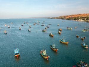 large fleet of fishing boats in the ocean