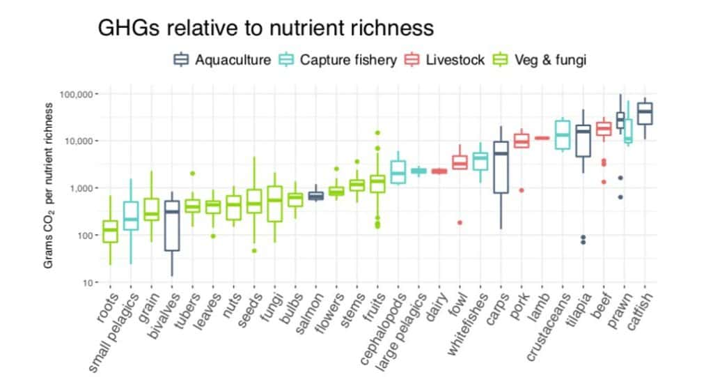 The environmental impact of nutrients in different kinds of food. From Koehn